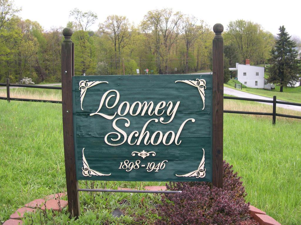 0 Looney Rd - Photo 3
