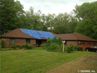 244  Kirk Rd  , Greece, NY 14612 (MLS #R250706) :: Robert PiazzaPalotto Sold Team