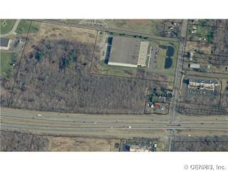 893  Hard Rd  , Webster, NY 14580 (MLS #R255738) :: Robert PiazzaPalotto Sold Team