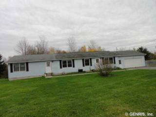 5506  State Route 14  , Sodus, NY 14551 (MLS #R266911) :: Robert PiazzaPalotto Sold Team