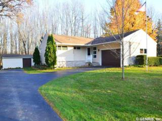 446  Trimmer Rd  , Parma, NY 14559 (MLS #R261832) :: Robert PiazzaPalotto Sold Team