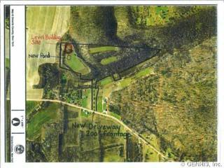 0  French Hill Rd  , Naples, NY 14512 (MLS #R268585) :: Robert PiazzaPalotto Sold Team
