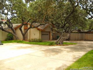 536  Rua De Matta St  , San Antonio, TX 78232 (MLS #1085154) :: Neal & Neal Team