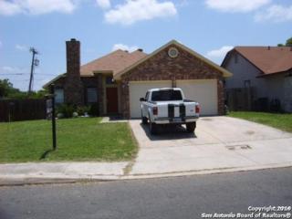 3102  Bear Springs Dr  , San Antonio, TX 78245 (MLS #1088320) :: Neal & Neal Team