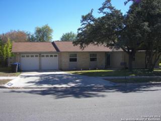 5802  Echoway St  , San Antonio, TX 78247 (MLS #1089412) :: Neal & Neal Team
