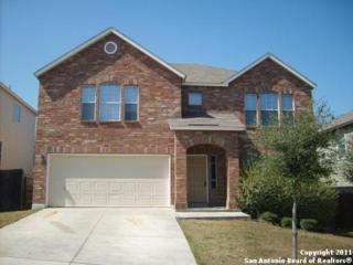 7819  Mainland Woods  , San Antonio, TX 78250 (MLS #1090953) :: Neal & Neal Team