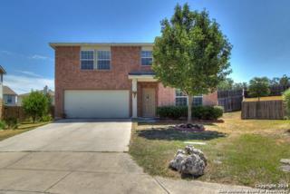 1831  Purple Tansy  , San Antonio, TX 78260 (MLS #1092223) :: Neal & Neal Team