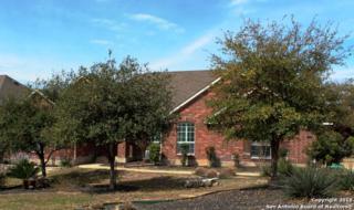 1810  Cactus Circle  , San Antonio, TX 78258 (MLS #1104096) :: Neal & Neal Team