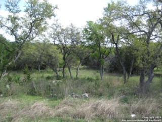 2134  Ranch Loop Dr  , New Braunfels, TX 78132 (MLS #1106397) :: Neal & Neal Team