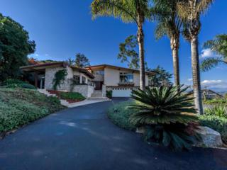 6423  Via De La Reina  , Bonsall, CA 92003 (#140034206) :: The Marelly Group | Realty One Group