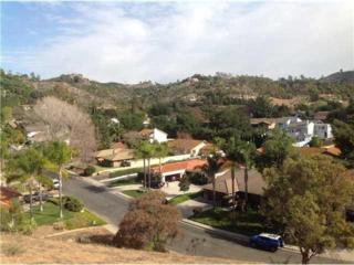 0  Secret Lake Lane  14, Fallbrook, CA 92028 (#140040388) :: The Marelly Group   Realty One Group