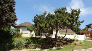 2276  Fuerte  , Oceanside, CA 92054 (#140044548) :: The Marelly Group | Realty One Group