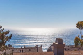 239  Sea Forest Ct.  , Del Mar, CA 92014 (#140047554) :: Pickford Realty LTD, DBA Berkshire Hathaway HomeServices California Properties