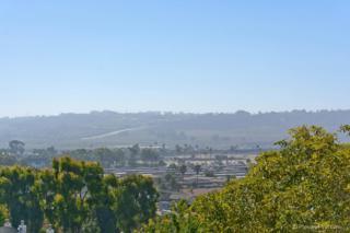 337  Shoemaker Ln.  , Solana Beach, CA 92075 (#140047768) :: Pickford Realty LTD, DBA Berkshire Hathaway HomeServices California Properties