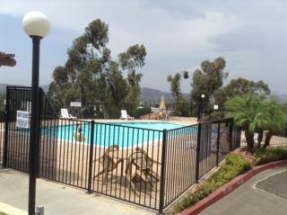 10781  Tamar  B, Santee, CA 92071 (#140047929) :: The Marelly Group   Realty One Group