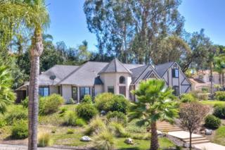 1521  Brengle Way  , Vista, CA 92084 (#140048106) :: The Marelly Group | Realty One Group