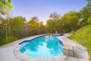 1032  Silver Springs Lane  , Fallbrook, CA 92028 (#140048156) :: The Marelly Group | Realty One Group