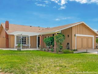 9125  Les  , Santee, CA 92071 (#140050161) :: The Marelly Group | Realty One Group