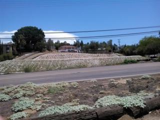 8717  Winter Gardens Blvd.  0, Lakeside, CA 92040 (#140051270) :: Whissel Realty