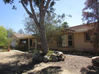 3060  Sumac  , Fallbrook, CA 92028 (#140051392) :: The Marelly Group | Realty One Group