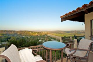 4634  Rancho Reposo  , Del Mar, CA 92014 (#140051895) :: The Marelly Group | Realty One Group