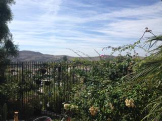 4419  Mar Escarpa  , San Clemente, CA 92673 (#140051961) :: Whissel Realty