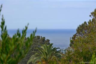 625  Avenida Primavera  , Del Mar, CA 92014 (#140052023) :: Pickford Realty LTD, DBA Berkshire Hathaway HomeServices California Properties