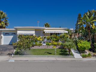 243  Gloxina  , Encinitas, CA 92024 (#140052880) :: The Marelly Group | Realty One Group