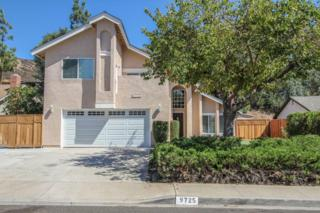 9725  Hinsdale St  , Santee, CA 92071 (#140053104) :: The Marelly Group | Realty One Group