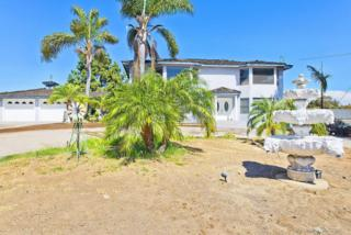 4328  Grace Road  , San Diego, CA 91902 (#140053365) :: The Marelly Group | Realty One Group