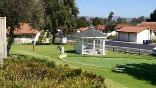1828  Belle Grove Road  , Encinitas, CA 92024 (#140053550) :: Avanti Real Estate