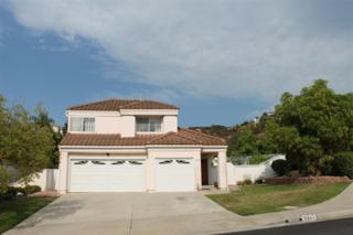 5347  Belardo  , San Diego, CA 92124 (#140053698) :: The Marelly Group | Realty One Group