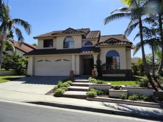 1371  Beringer  , Vista, CA 92081 (#140054817) :: The Marelly Group | Realty One Group