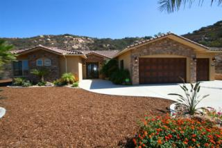 2348  Kevin Ct  , Apline, CA 91901 (#140057213) :: Whissel Realty