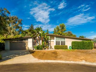 3004  Cranbrook Street  , La Jolla, CA 92037 (#140057273) :: Whissel Realty
