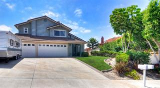 3351  Concord  , Carlsbad, CA 92010 (#140057290) :: The Marelly Group | Realty One Group