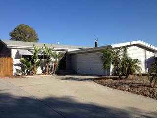 Santee, CA 92071 :: The Marelly Group | Realty One Group