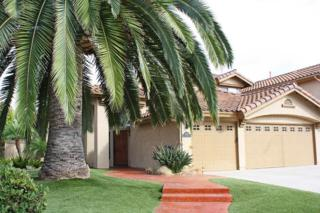 2029  White Birch  , Vista, CA 92081 (#140057518) :: The Marelly Group   Realty One Group