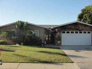 10431  Ken Lane  , Santee, CA 92071 (#140057928) :: The Marelly Group | Realty One Group