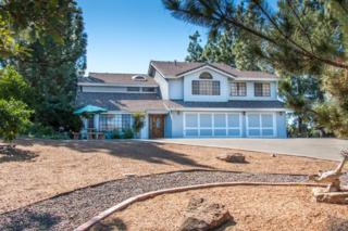 23711  Moonglow Court  , Ramona, CA 92065 (#140058153) :: The Marelly Group | Realty One Group