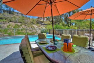 9524  High Park Lane  , San Diego, CA 92129 (#140058156) :: The Marelly Group | Realty One Group