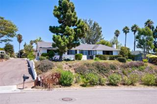 1792  Troy Lane  , Oceanside, CA 92054 (#140058162) :: The Marelly Group | Realty One Group