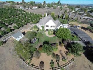 3602  Lake Ridge Rd.  , Fallbrook, CA 92028 (#140058191) :: The Marelly Group | Realty One Group