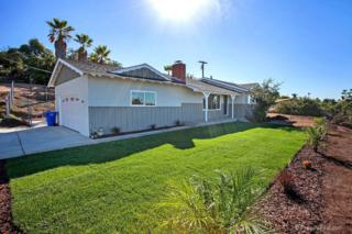 1847  Cathan Lane  , Vista, CA 92084 (#140058215) :: The Marelly Group | Realty One Group