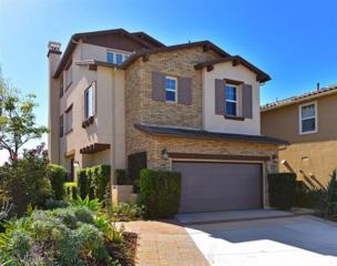 6452  Cinnabar Way  , Carlsbad, CA 92009 (#140058830) :: Avanti Real Estate