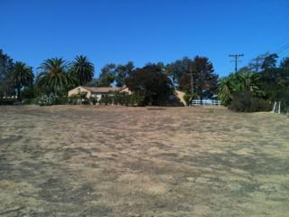 1349  Crest Drive  , Encinitas, CA 92024 (#140058855) :: Avanti Real Estate