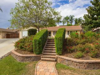 603  Summit Avenue  , Fallbrook, CA 92028 (#140059099) :: The Marelly Group | Realty One Group