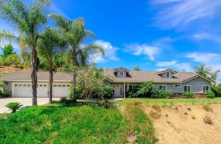 1344 N Lorenzo Drive  , Fallbrook, CA 92028 (#140059114) :: The Marelly Group | Realty One Group
