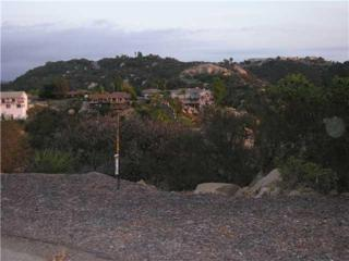 8.46  Acres Sandhurst Way  8.46 Acres, Escondido, CA 92026 (#140062167) :: The Marelly Group | Realty One Group