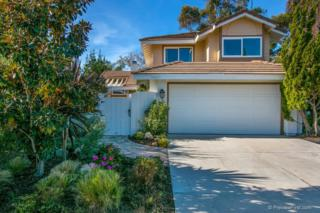 7957  Calle Madrid  , Carlsbad, CA 92009 (#140062439) :: The Marelly Group | Realty One Group